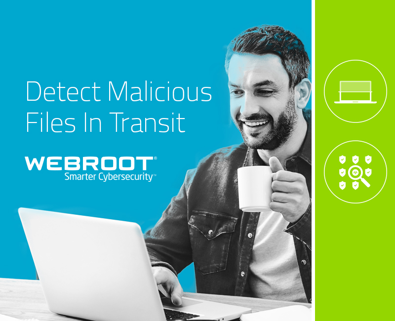 Introducing Webroot BrightCloud® Streaming Malware Detection
