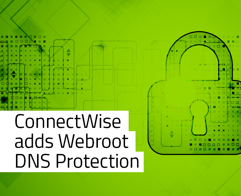 Managed Service Providers Archives - Webroot Blog